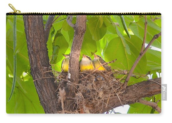 Baby Birds Waiting For Mom Carry-all Pouch