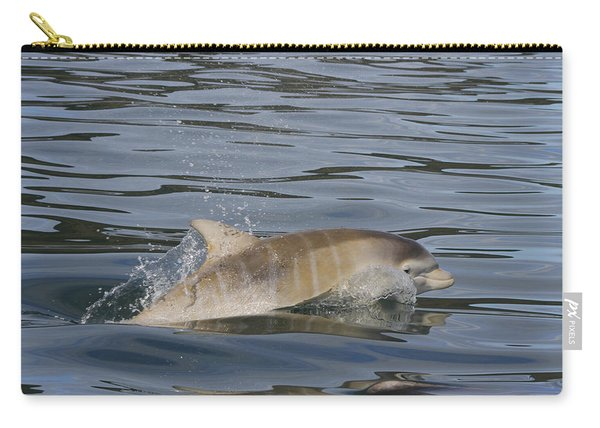 Baby Bottlenose Dolphin - Scotland  #35 Carry-all Pouch