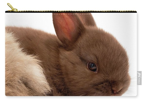 Baby Bunny  #03074 Carry-all Pouch