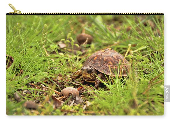 Baby Eastern Box Turtle Carry-all Pouch
