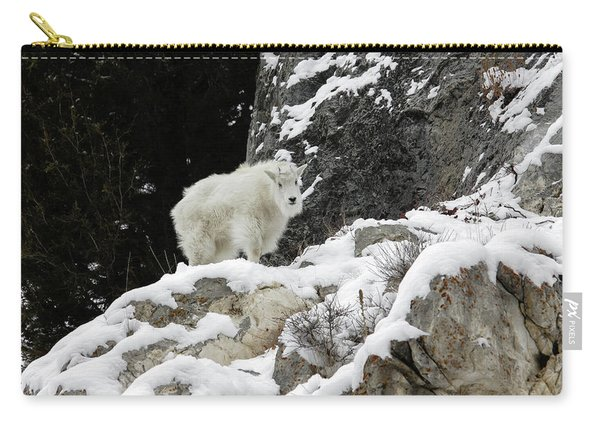 Baby Mountain Goat Carry-all Pouch