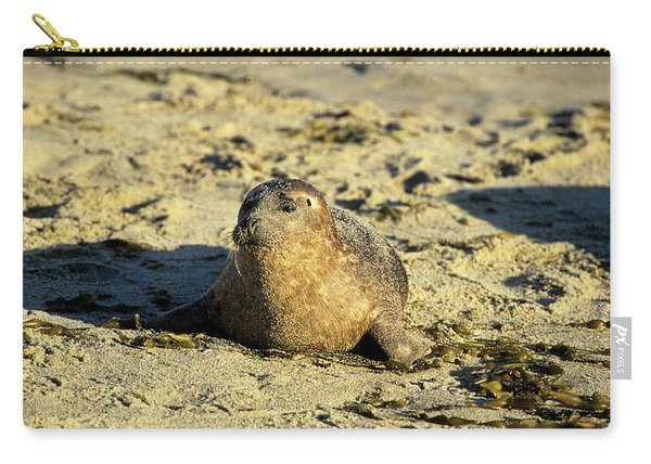 Baby Seal In Sand Carry-all Pouch