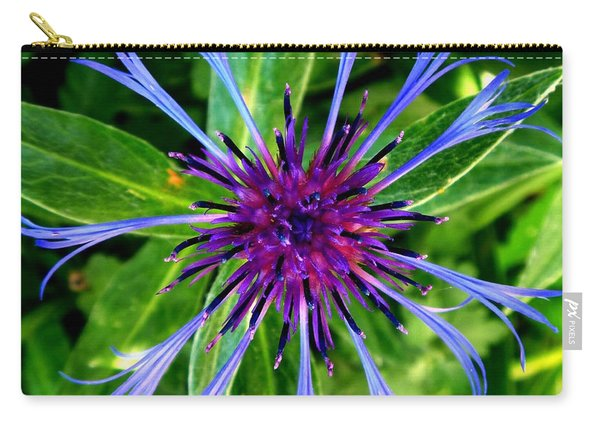 Bachelor Button Blossom Carry-all Pouch