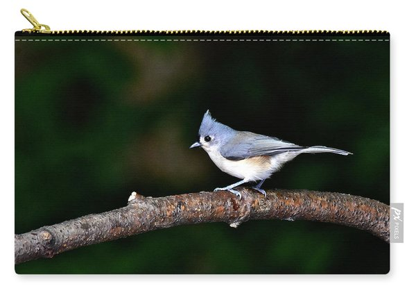 Back Yard Bird Carry-all Pouch