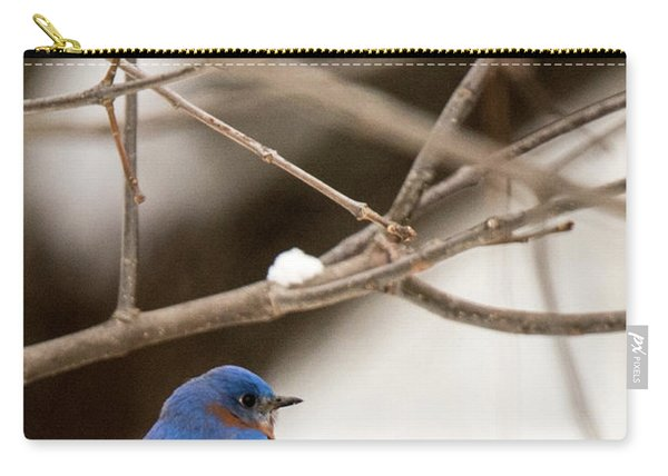 Backyard Bluebird Carry-all Pouch
