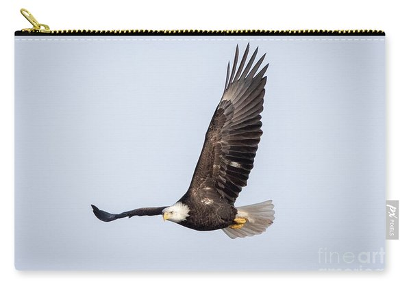 Bald Eagle Flying Over Horicon Marsh Carry-all Pouch