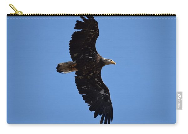 Carry-all Pouch featuring the photograph Bald Eagle Juvenile Soaring by Margarethe Binkley