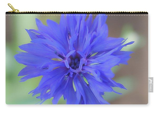 Ballerinas Carry-all Pouch