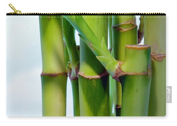 Bamboo And Sky Carry-all Pouch