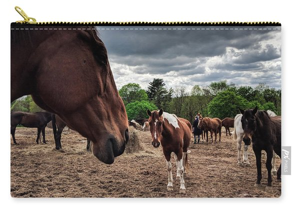 Band Of Horses Carry-all Pouch