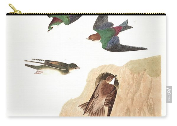 Bank Swallow Carry-all Pouch