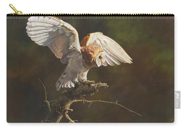 Carry-all Pouch featuring the painting Barn Owl by Alan M Hunt