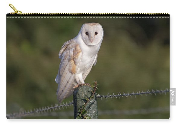 Barn Owl On Ivy Post Carry-all Pouch