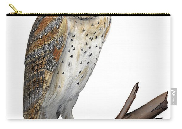 Barn Owl Screech Owl Tyto Alba - Effraie Des Clochers- Lechuza Comun- Tornuggla - Nationalpark Eifel Carry-all Pouch