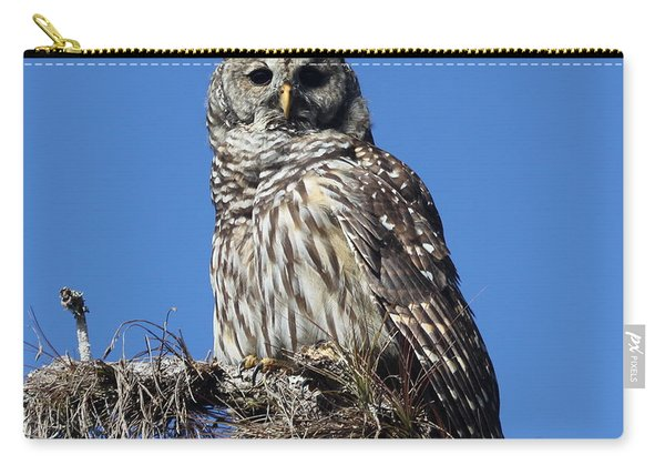 Barred Owl Portrait Carry-all Pouch