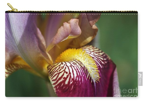 Bearded Iris Flower Mary Todd Carry-all Pouch