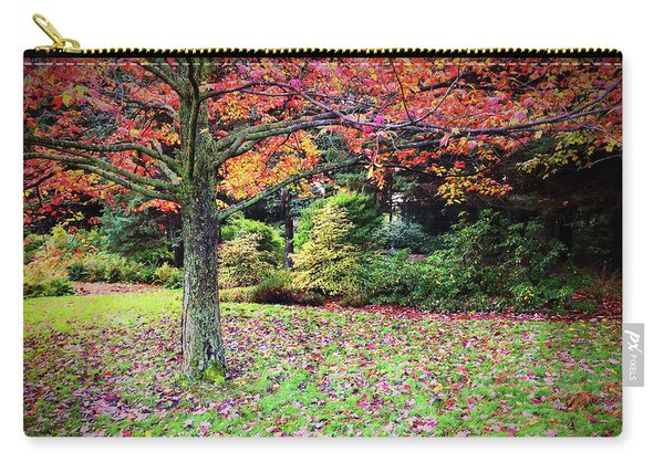 Beautiful Autumn Landscape Full Of Colors Carry-all Pouch