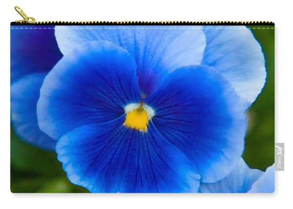 Beautiful Blues Carry-all Pouch