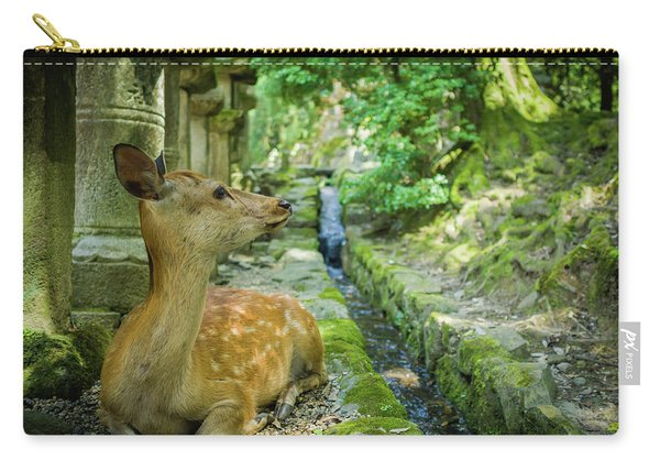 Beautiful Deer In Nara, Japan. Carry-all Pouch