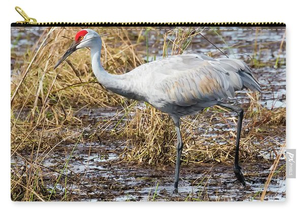 Beautiful Day For A Walk -sandhill Crane   Carry-all Pouch