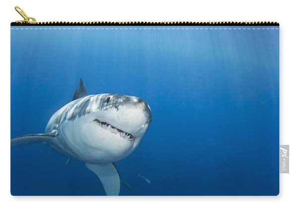 Beautiful Great White Carry-all Pouch