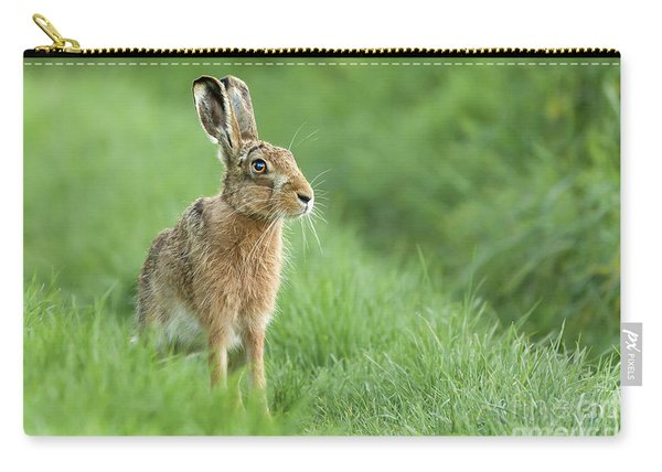 Beautiful Norfolk Wild Hare Sat On Grass Carry-all Pouch