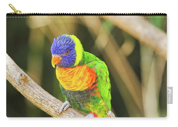 Beautiful Perched Mccaw On A Branch. Carry-all Pouch