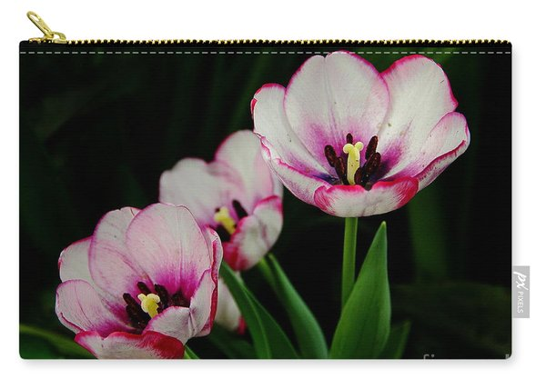 Beauty Abounds Carry-all Pouch