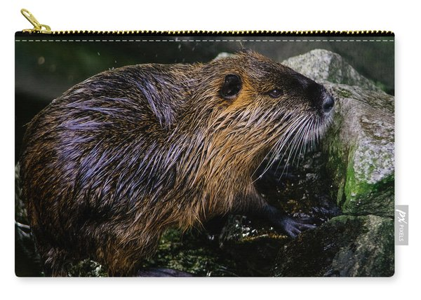 Beaver On The Rocks Carry-all Pouch