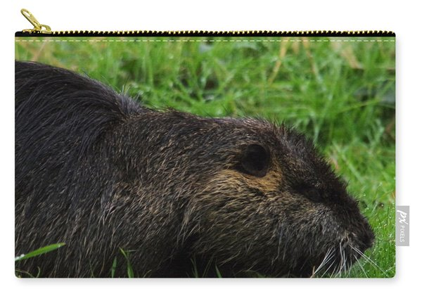 Beaver Whiskers Carry-all Pouch