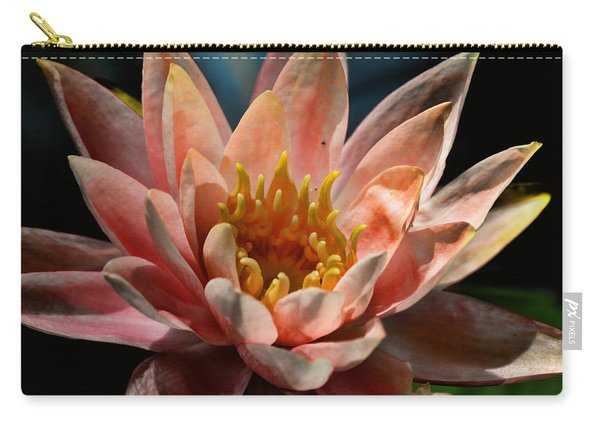 Beckoning The Sun Water Lily Carry-all Pouch
