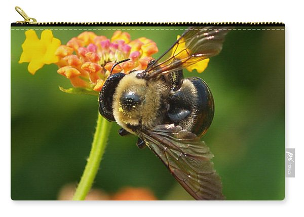Bee 2 Carry-all Pouch