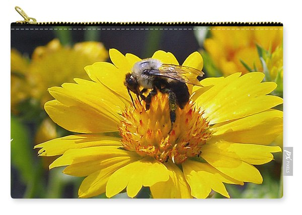 Bee 3 Carry-all Pouch