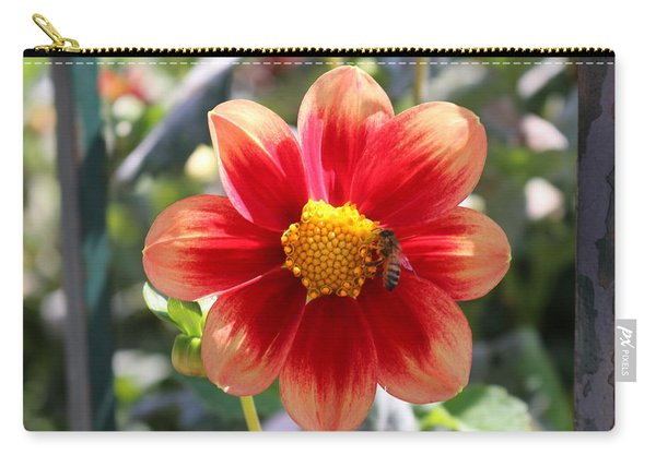 Carry-all Pouch featuring the photograph Bee On A Flower  by Christy Pooschke