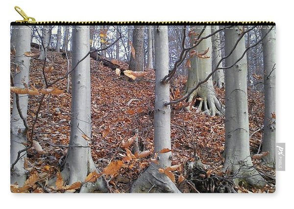 Beech Trees Carry-all Pouch