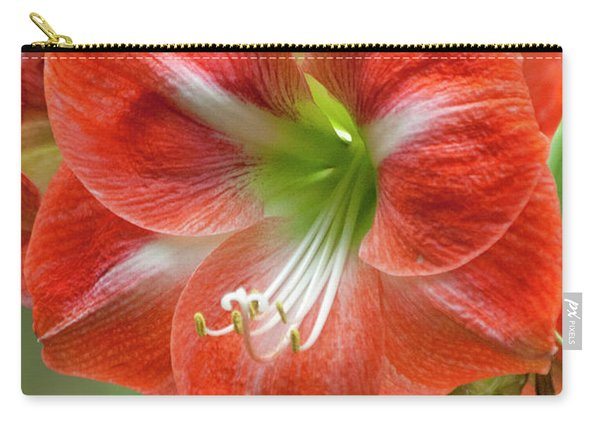 Belladonna Lily Amarillo Carry-all Pouch