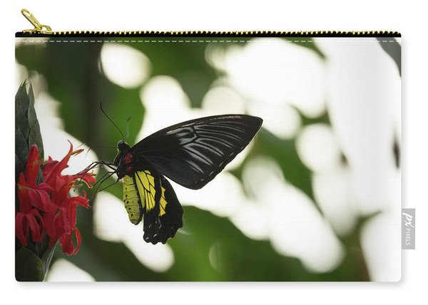 Carry-all Pouch featuring the photograph Big Butterfly by Brian Hale