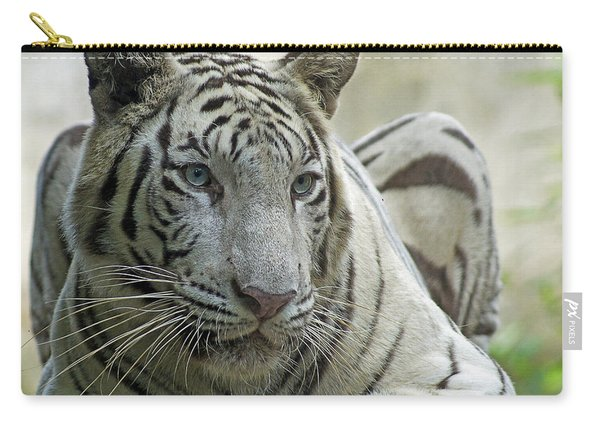 Big Cats 117 Carry-all Pouch