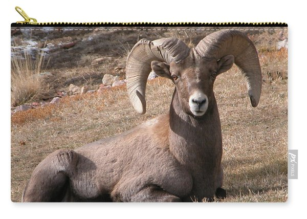 Carry-all Pouch featuring the photograph Big Horn Sheep by Joseph R Luciano