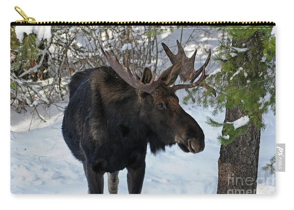 Big Moose Carry-all Pouch