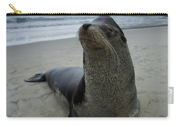 Big Seal Carry-all Pouch