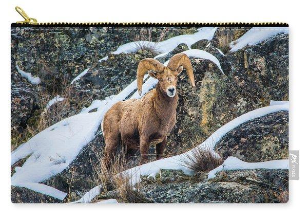 Bighorn Ram 3 Carry-all Pouch