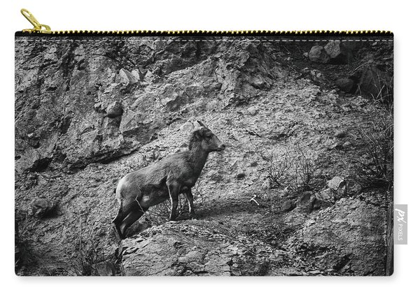 Carry-all Pouch featuring the photograph Bighorn Sheep Ewe On Wolf Creek Pass by Jason Coward