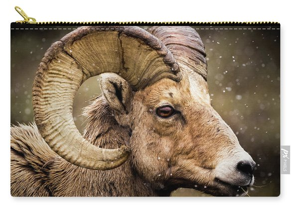 Bighorn Sheep In Winter Carry-all Pouch
