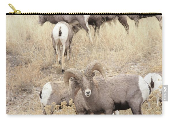 Bighorn6 Carry-all Pouch