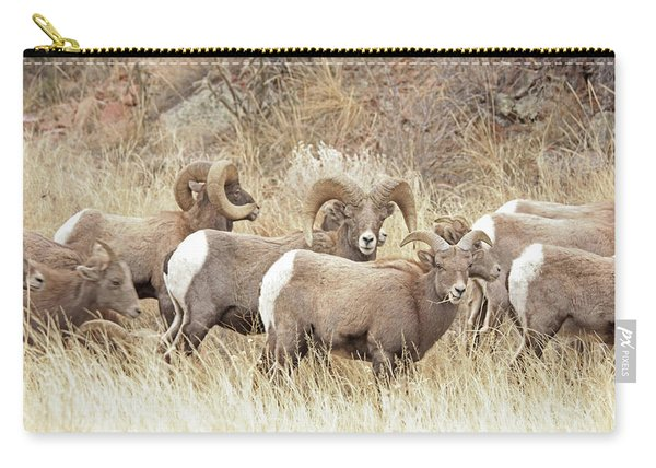 Bighorn7 Carry-all Pouch