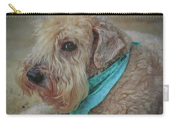 Binkley Carry-all Pouch