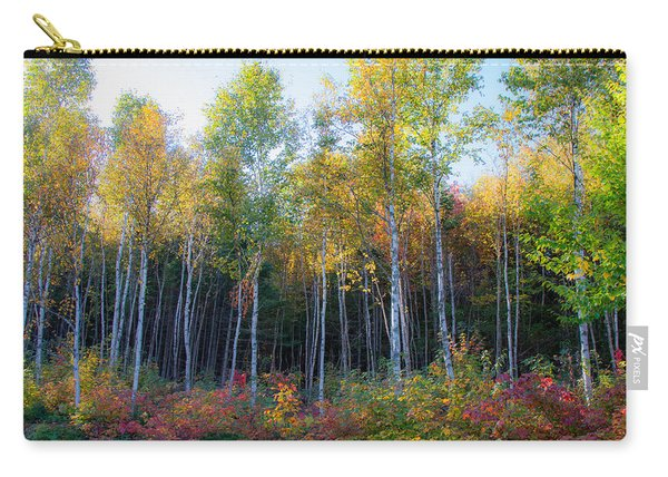 Birch Trees Turn To Gold Carry-all Pouch