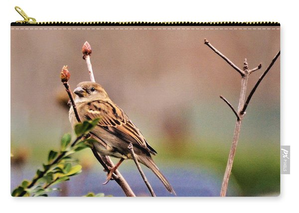 Bird In The Cold Carry-all Pouch