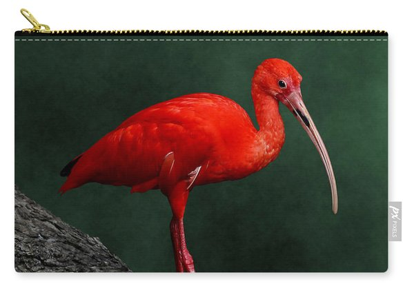 Bird On A Catwalk Carry-all Pouch